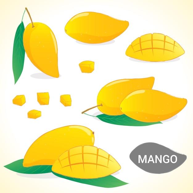 Set of mango in various styles vector format Premium Vector