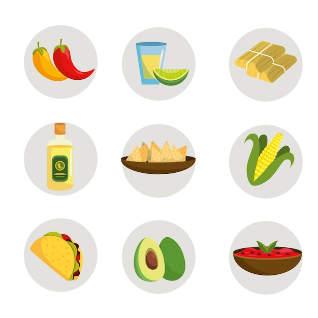 Set mexican food with tequila and avocado Premium Vector
