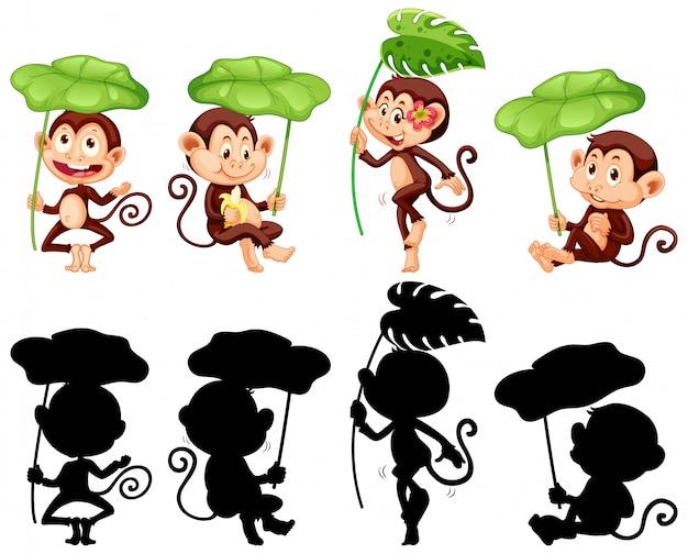 Insieme della foglia della tenuta della scimmia e della sua siluetta Vettore gratuito