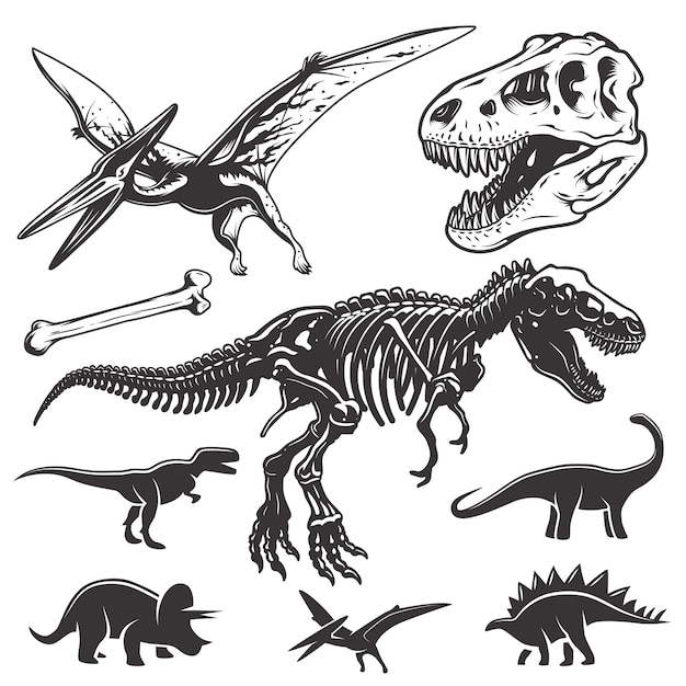 Set of monochrome dinosaurs. archeology elements. t-rex skull and skeleton. dinosaurs icons. Free Vector