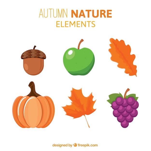 Set of nature elements Free Vector