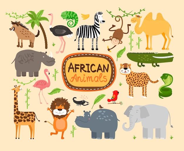아프리카 동물의 집합입니다. 육식 동물 표범과 사자. 코끼리와 하마, 기린과 낙타 무료 벡터