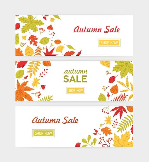 倒れた木の葉と秋の水平webバナーテンプレートと果実と小枝のセット Premiumベクター