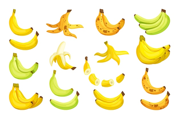 バナナイラストのセット Premiumベクター