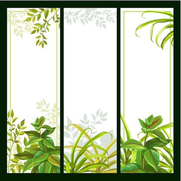 熱帯植物とバナーの背景のセットです。 無料ベクター