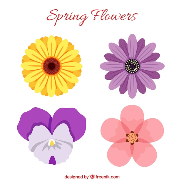 Set of beautiful spring flowers vector free download set of beautiful spring flowers free vector mightylinksfo