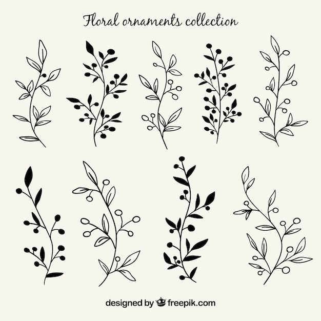 Stock Photo Hand Shows The Fist As as well Hand Drawn Of Thailand Map Vector Illustration Gm694134580 128267199 besides Mickey Minnie Mouse further Set Of Branches With Hand Drawn Leaves 1269701 moreover 1086472. on hand drawing