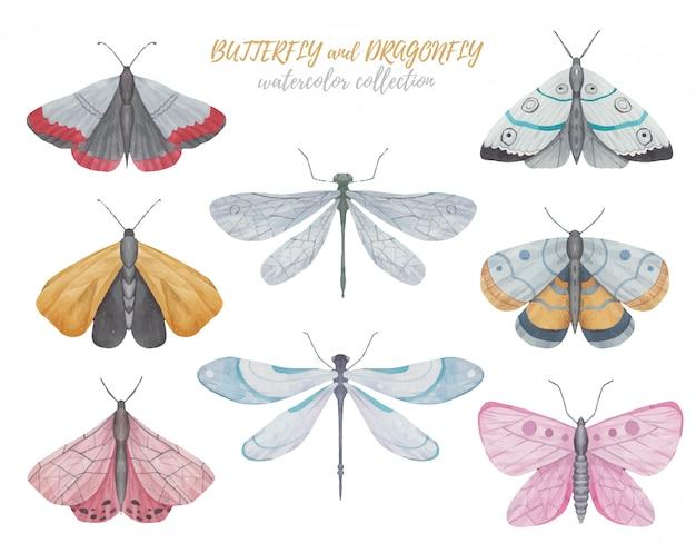 白い背景の上の蝶、トンボ、蛾の水彩イラストのセット Premiumベクター