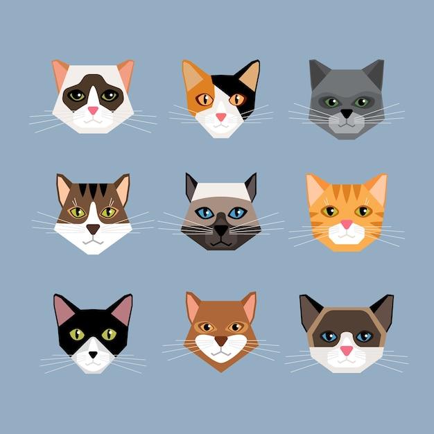 평면 스타일에 고양이 머리의 집합입니다. 새끼 고양이, 수염 및 귀, 총구 및 양모 얼굴. 무료 벡터