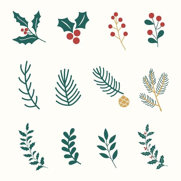 크리스마스 식물 세트 무료 벡터