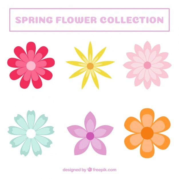 set of colored decorative flowers free vector - Decorative Flowers