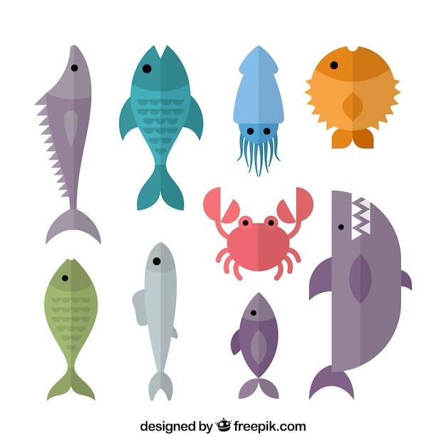 フラットスタイルのカラフルな魚のセット 無料ベクター