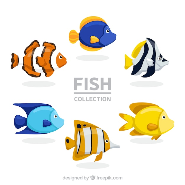 Set of colorful fishes in hand drawn\ style
