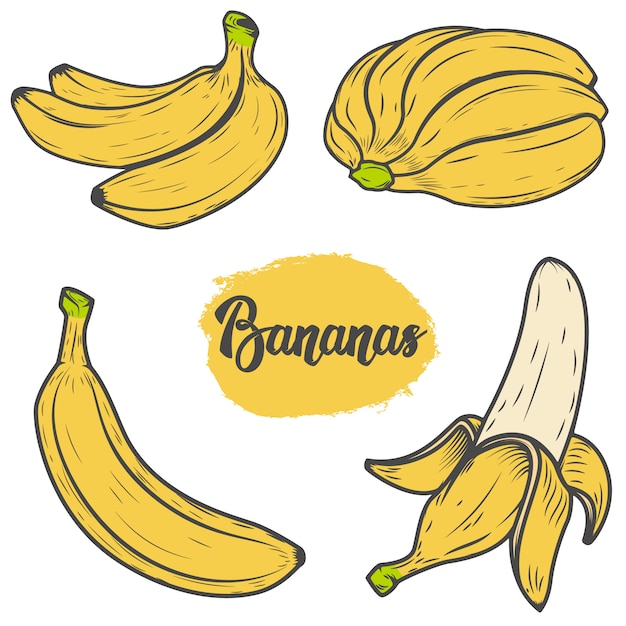Набор красочных рисованной банановых иллюстраций. элементы для логотипа, этикетки, эмблемы, знака, меню. иллюстрация Premium векторы