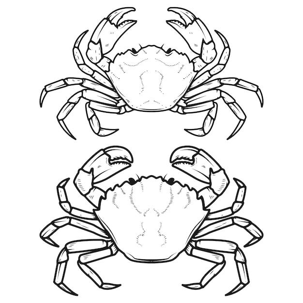Набор иконок крабов на белом фоне. элементы для меню ресторана, плакат. Premium векторы