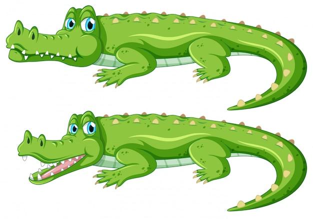 Набор крокодиловых символов Бесплатные векторы