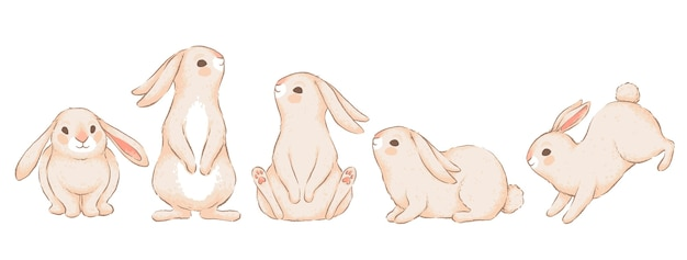 さまざまなポーズでかわいい面白いウサギのセット。手作りの水彩画の模倣。白い背景で隔離。 Premiumベクター