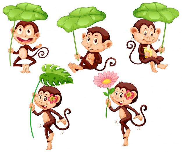 白い背景の上の緑の葉とかわいい猿のセット 無料ベクター