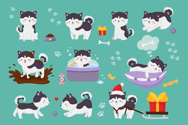 귀여운 시베리안 허스키 강아지의 집합입니다. 귀엽다 만화 캐릭터 강아지는 진흙 웅덩이에서 점프, 세척, 공 놀이, 베개에 자입니다. 프리미엄 벡터