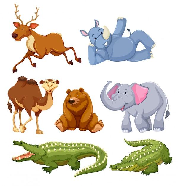 Набор разных животных Бесплатные векторы