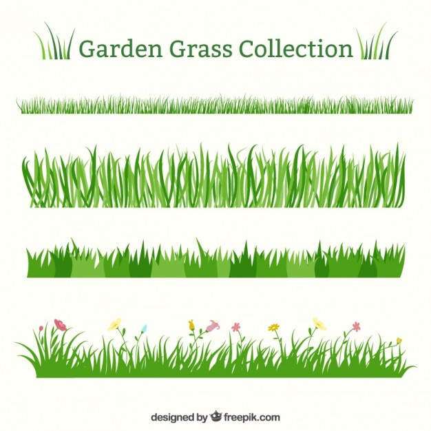 Set of different garden grass  Free Vector