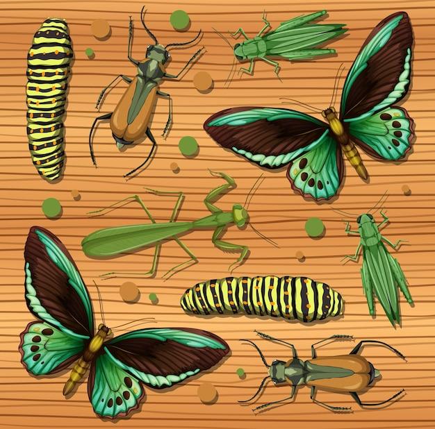 Набор различных насекомых на фоне деревянных обоев Бесплатные векторы