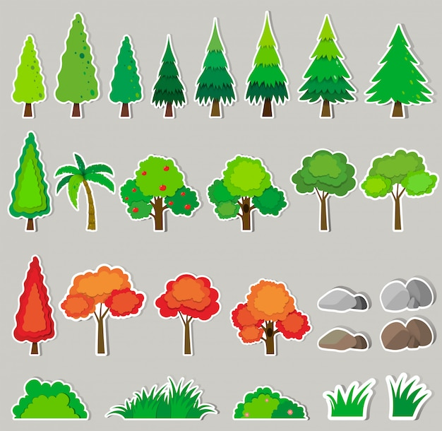 Набор различных видов растений Бесплатные векторы