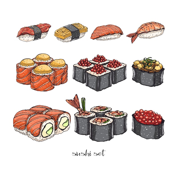 さまざまな種類のおいしいロールパンと寿司のセット。手描きイラスト Premiumベクター