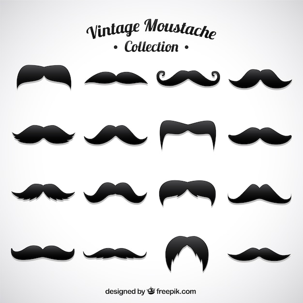 Set Of Different Moustaches In Vintage Style Vector Free