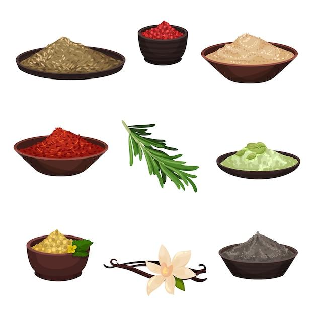 異なる調味料のセット。料理に風味を付けるための有機香料成分。料理のテーマ Premiumベクター