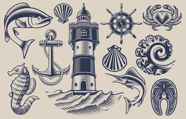 Набор элементов для темы морепродуктов на светлом фоне Premium векторы