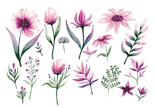 水彩風の花のデザイン要素のセット Premiumベクター