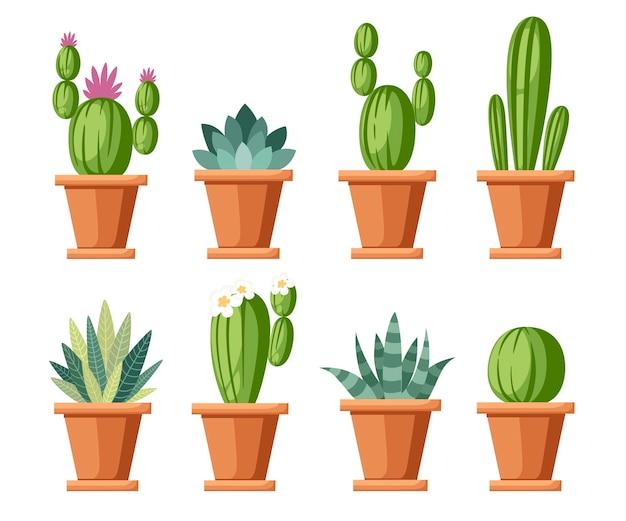 花と装飾的なサボテンのセットです。家の植物の鉢にサボテンと花。さまざまな装飾花。 。白い背景のイラスト。 Premiumベクター