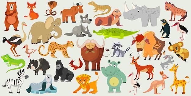 전 세계의 재미있는 동물, 새 및 파충류의 집합입니다. 세계 동물 군. 삽화 프리미엄 벡터