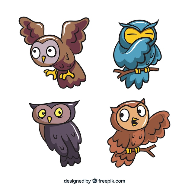 Set of funny cartoon owls