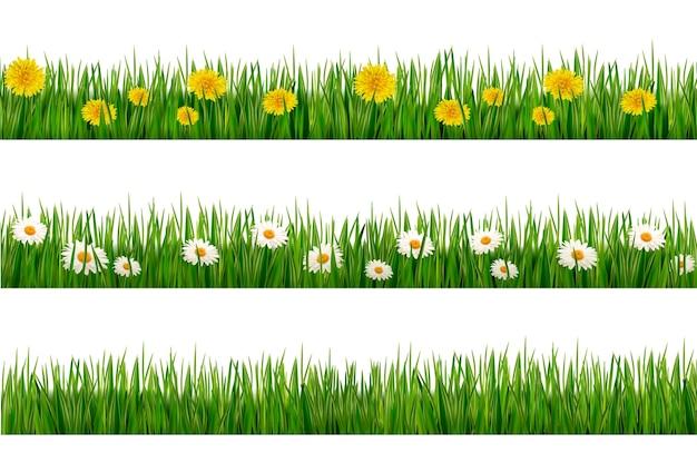 Набор зеленой травы с одуванчиками и ромашками Premium векторы