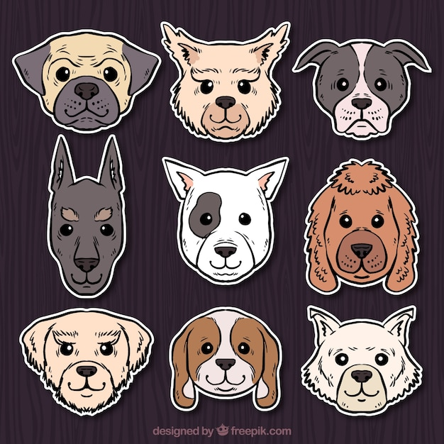 Set of hand-drawn dog stickers