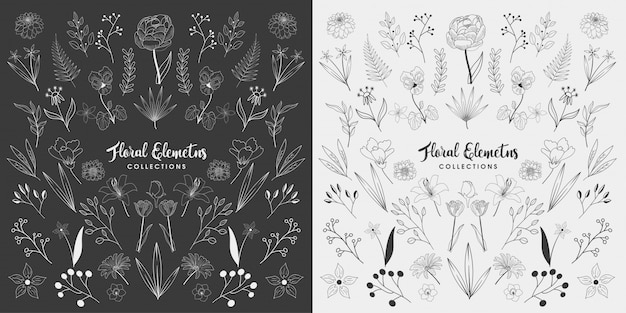 手描きの花の要素のセット Premiumベクター