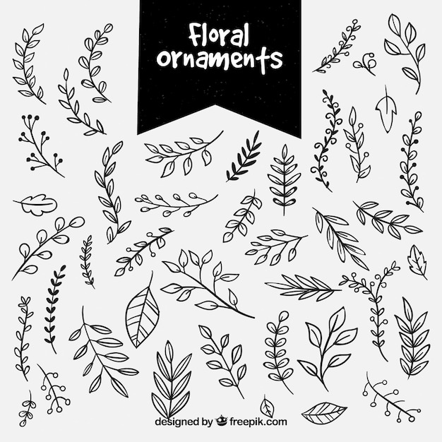 Set of hand drawn floral ornaments Free Vector