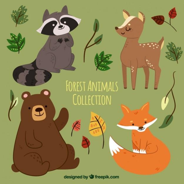 Набор рисованной лесных животных с листьями Premium векторы