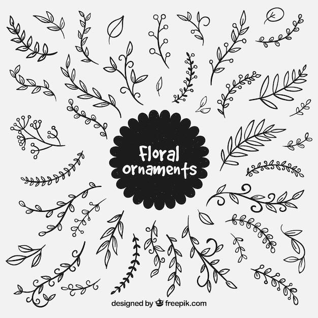 download vector leaf ornament vectorpicker vector leaf ornament vectorpicker