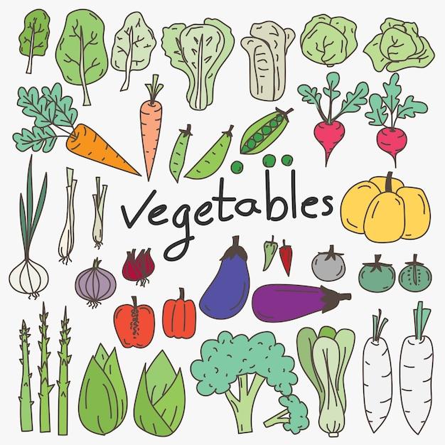 手描きの野菜のセット Premiumベクター