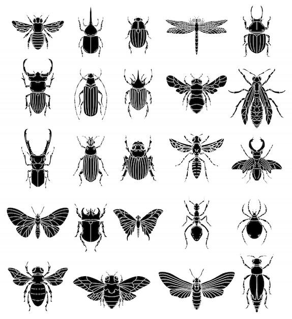 白い背景の上の昆虫のイラストのセットです。ロゴ、ラベル、エンブレム、記号、バッジの要素。画像 Premiumベクター