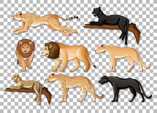 투명 한 배경에 고립 된 아프리카 야생 동물의 집합 무료 벡터