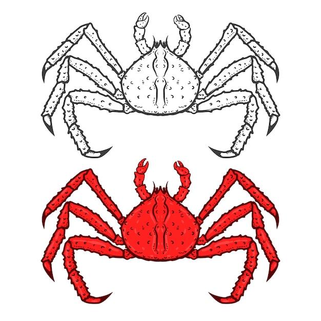 白い背景で隔離王の赤いカニのアイコンのセットです。シーフード。ロゴ、ラベル、エンブレム、記号、ブランドマークの要素。図。 Premiumベクター