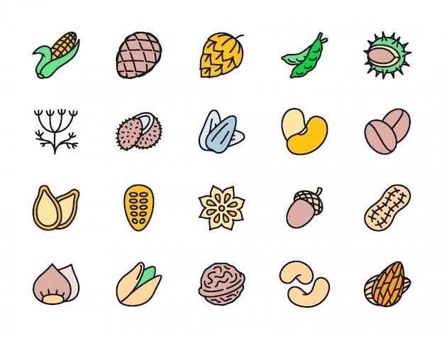 Набор орехов и семян плоских цветных значков. кукурузный початок, горох, укроп Premium векторы
