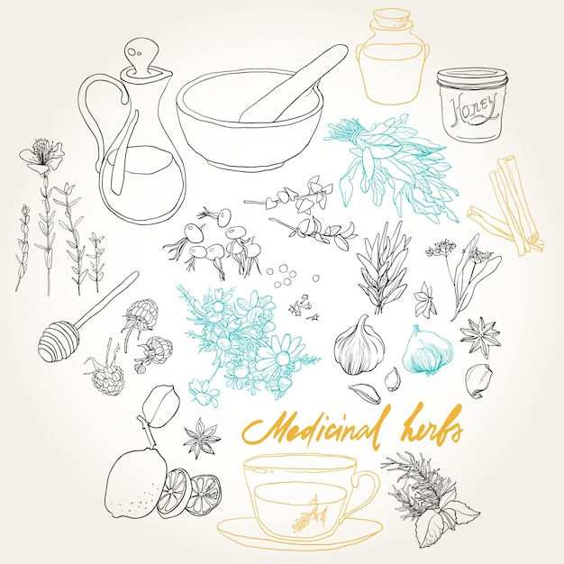 Набор предметов и трав для лечения простуды. Бесплатные векторы