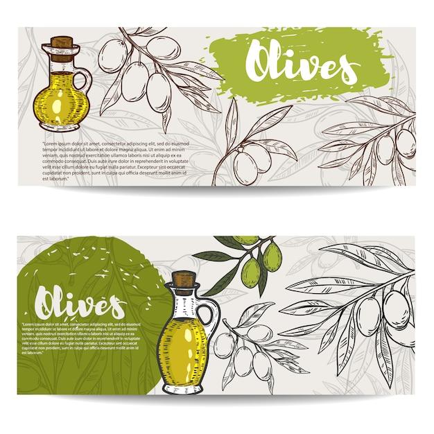 Набор листовки оливкового масла. ветка оливы. элементы для флаера, плаката. иллюстрация Premium векторы