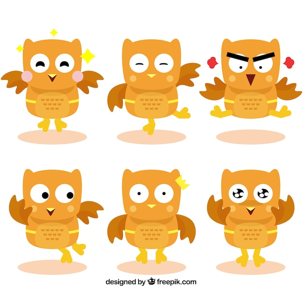 Set of orange cartoon owls