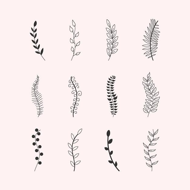 装飾品の木の枝ユーカリの木、ヤシ、葉、草のセットです。ヴィンテージの要素の葉、花、渦巻き、羽の手作りのスケッチ。ペンブラシで描かれた色付きの要素。図。 Premiumベクター